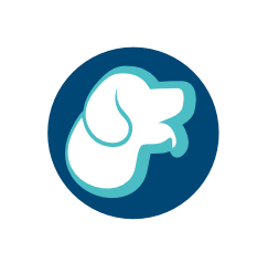 West Sussex, East Preston dog grooming courses